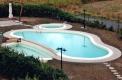 costruzione piscine forma libera